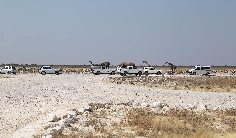 Safari to Self-drive with Africa Travel Resource