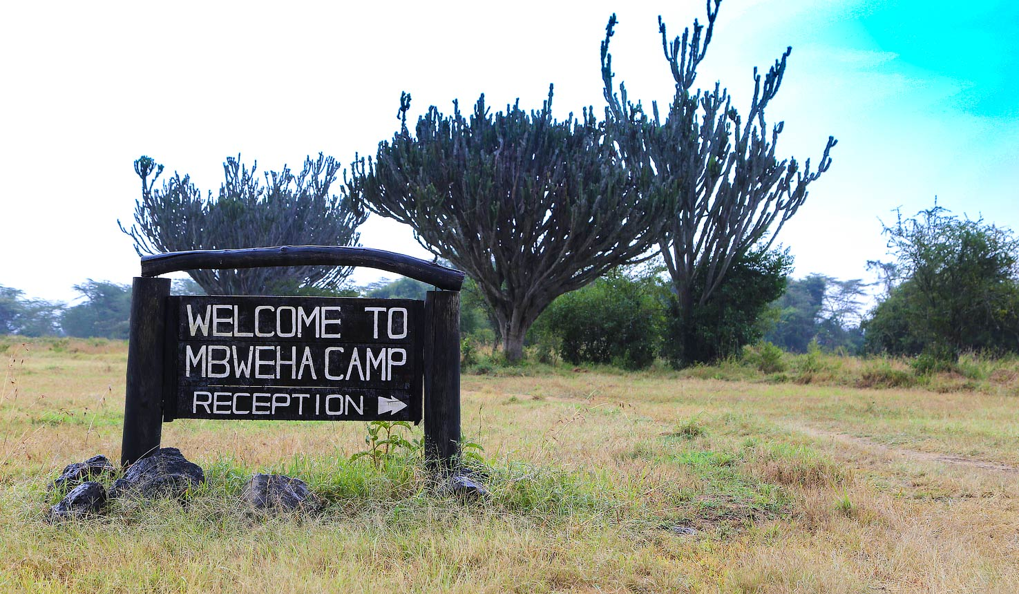 Safari To Mbweha Camp With Africa Travel Resource