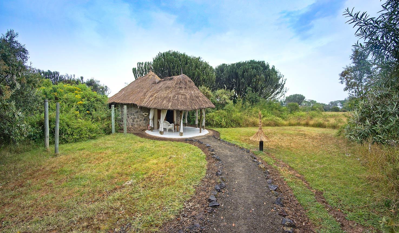 Safari To Mbweha Camp With Africa Travel Resource
